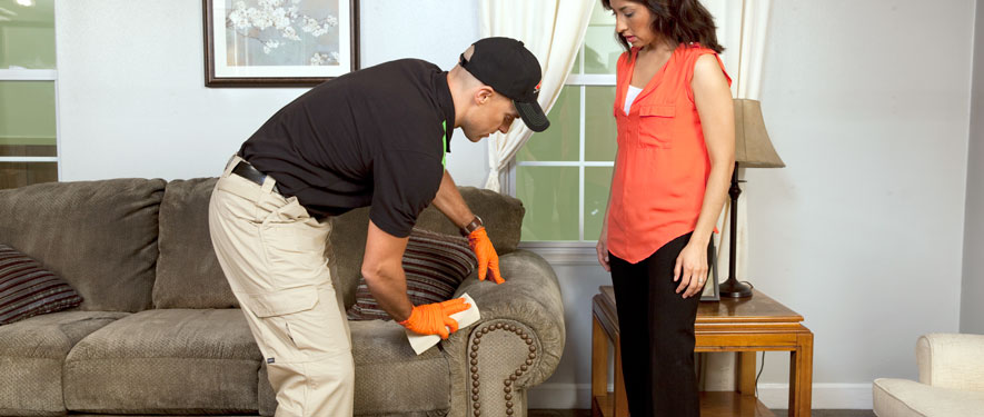 Jacksonville, NC carpet upholstery cleaning