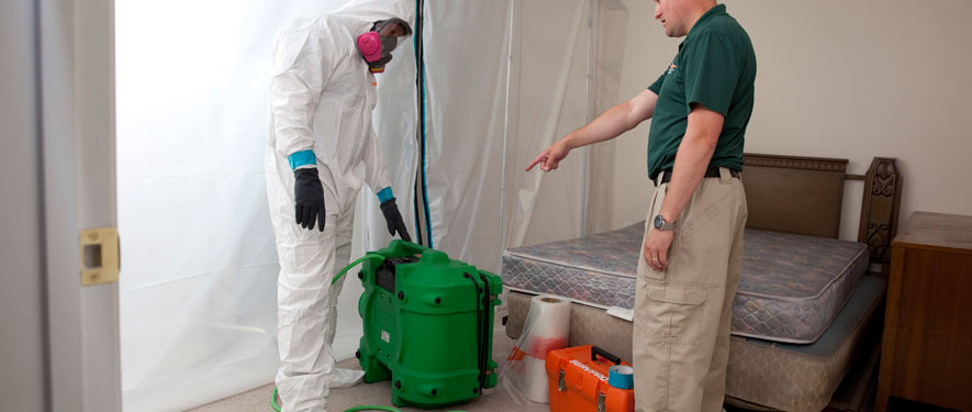 Jacksonville, NC mold removal process